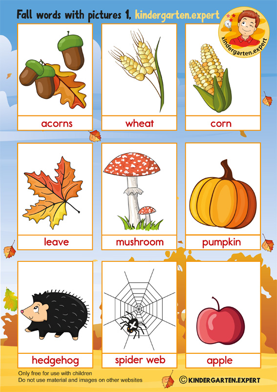 Fall words with pictures for kindergarten, kindergarten expert, free printable