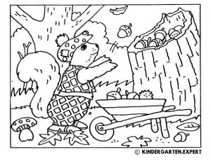 Squirrel with accorns, fall coloring page, kindergarten expert, free printable.