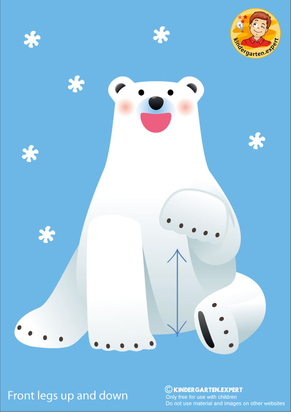 Bear 2, front legs up and down, North Pole and South Pole theme, free printable, kindergarten expert