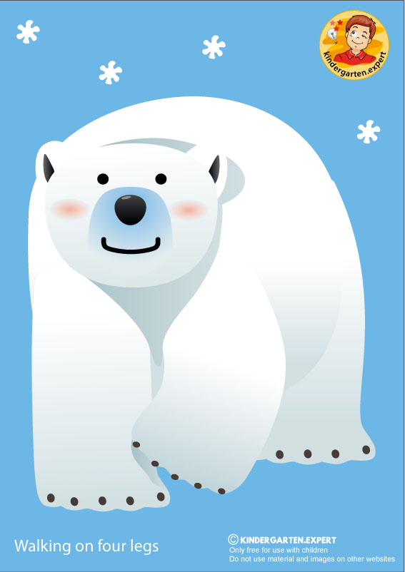 Bear 2, walking on four legs, North Pole and South Pole theme, free printable, kindergarten expert