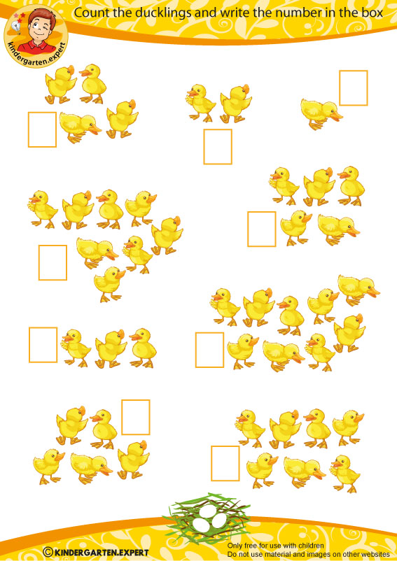 Count the ducklings, spring theme, kindergarten expert, free printable