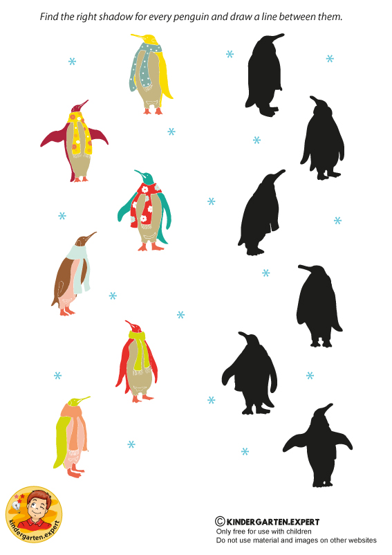 Find the right shadow, North Pole and South Pole theme, kindergarten expert, free printable