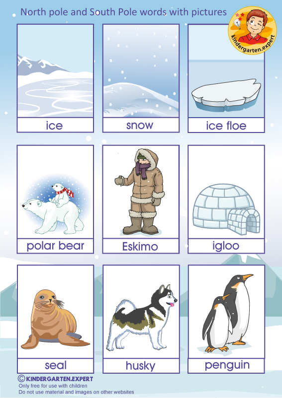 North Pole and South Pole words with pictures, kindergarten expert, free printable