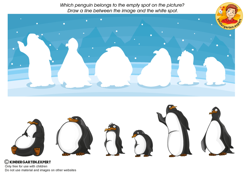 Where does the penguin belong, North Pole and South Pole theme, kindergarten expert, free printable