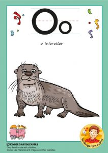O is for otter, kindergarten expert, free printable
