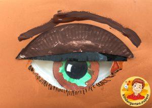 Making an eye in kindergarten 1, eye theme, kindergarten expert